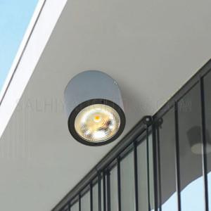 Indoor/Outdoor Ceiling Light 2236-COB - Graphite