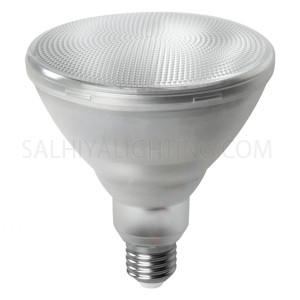 Megaman E27 LED Bulb PAR38 LR3215.5 15.5W 2800K- Warm White