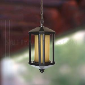 Outdoor Hanging Light A21-25 - Black