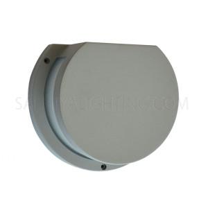 Indoor/Outdoor  Wall Light 5661 - Silver