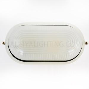 Indoor / Outdoor Bulkhead Light /  Wall Light P-807 - White