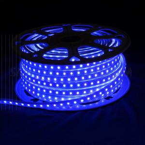 50M High Quality LED Flexible Strip Light 5050 8W/M IP65 - Blue