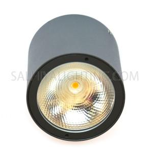 Indoor/Outdoor Ceiling Light 2236-COB 1* 7W IP54 3000K - Black