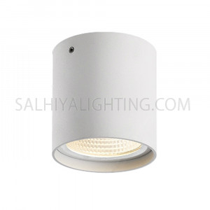 Indoor/Outdoor Ceiling Light H1982 GU10 7W IP54 - White