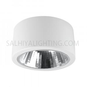 Megaman L0503CL Energy Saving 13W  Surface Mounted Luminaire Daylight