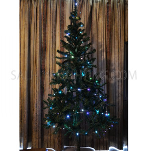 String Decoration Light Multi Color Steady On 100LED (10M) for Christmas, Wedding and Parties